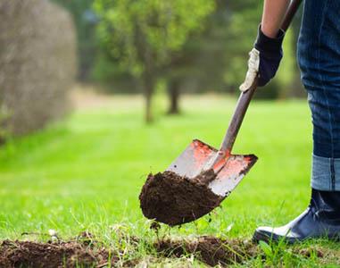 Arbeiten rund ums Haus GmbH, Gartenpflege